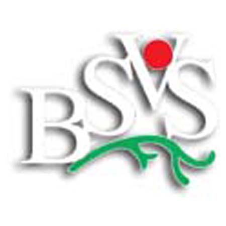 Bangladesh Society Of Vascular Surgeon